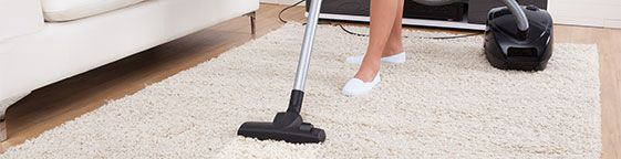 Pimlico Carpet Cleaners Carpet cleaning