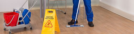 Pimlico Carpet Cleaners Office cleaning